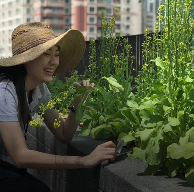 เก็บ เลือก ปลูก รักษา วิธีรักษาธรรมชาติรอบตัวโครงการของแสนสิริ - Green Mission - Sansiri Backyard